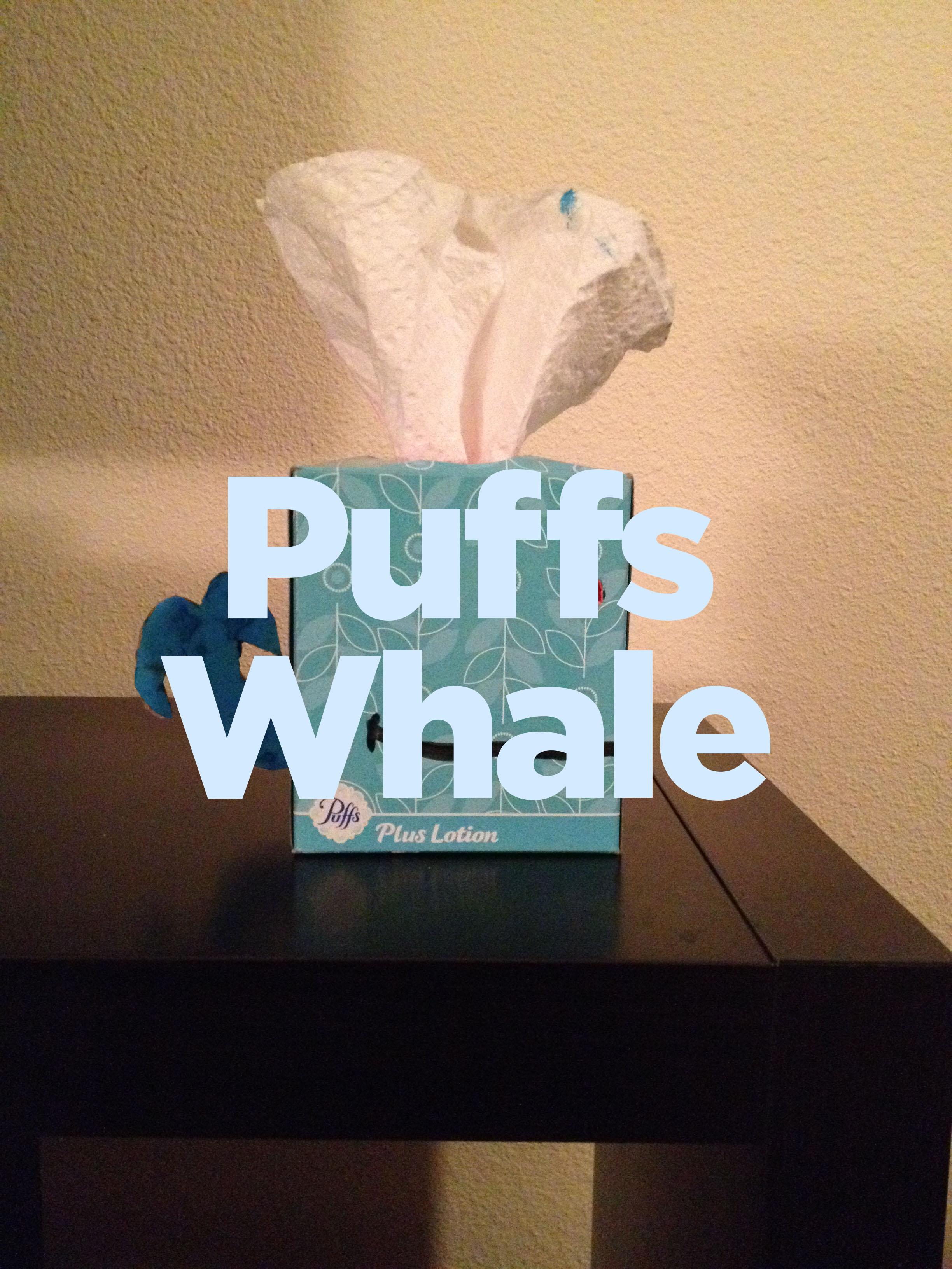 Puffs whale2